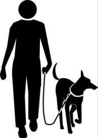 Basisausbildung Hundesport